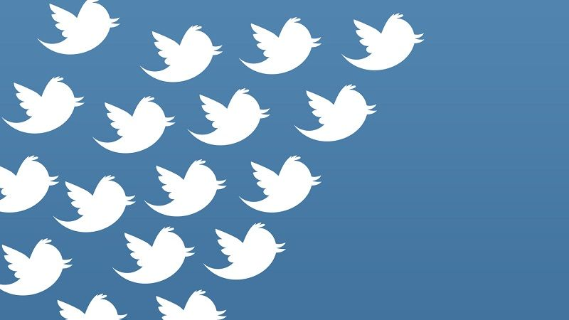 Tipos de Seguidores en Twitter