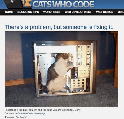 404 Imágen 15