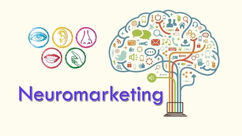 Neuromarketing: Definición y Ejemplos de Cómo Aplicarlo en tu Negocio